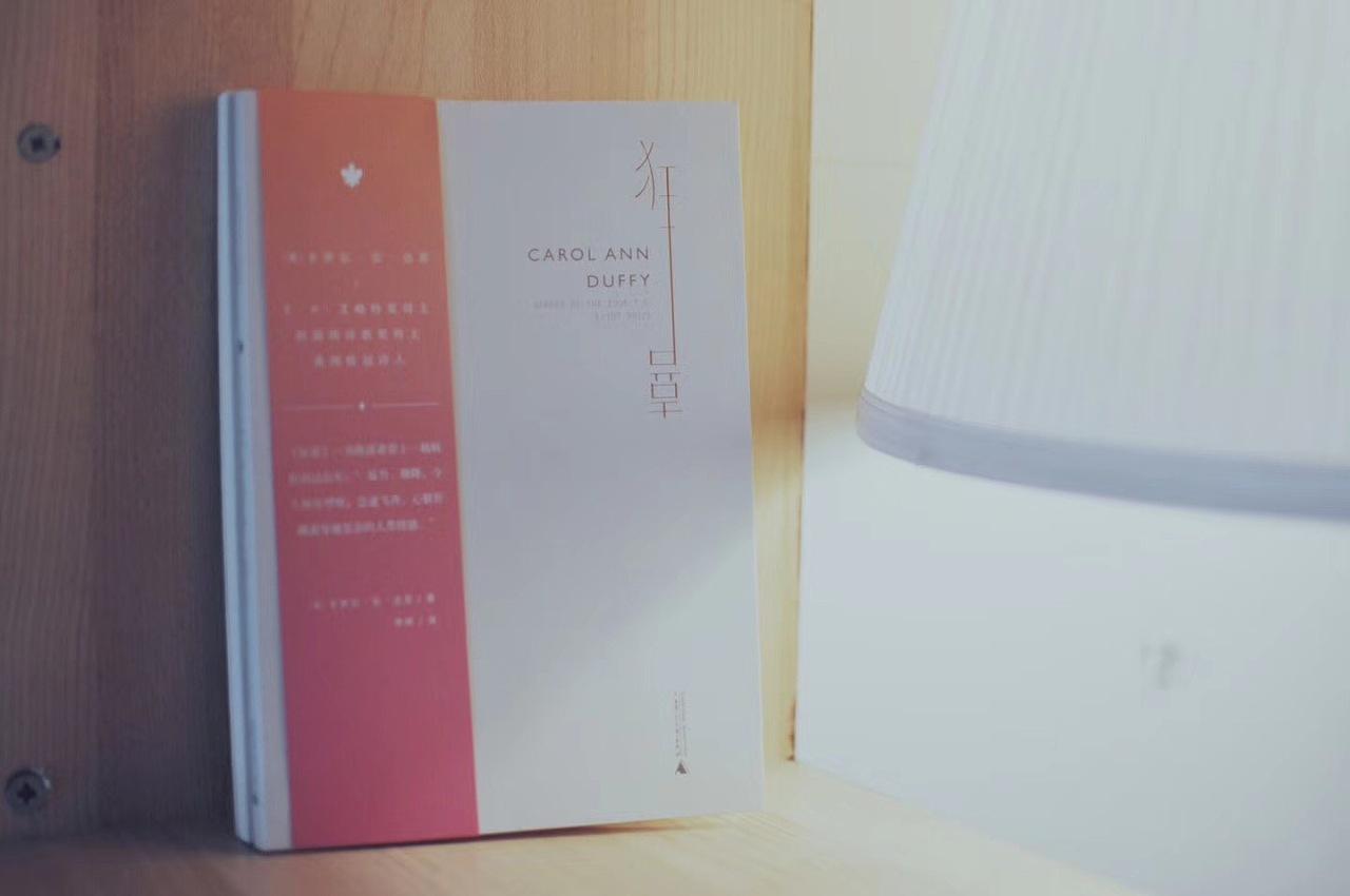 《蜜蜂》&《狂喜》英国桂冠诗人卡罗尔·安·达菲诗歌集